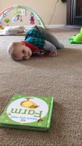 commando-crawl